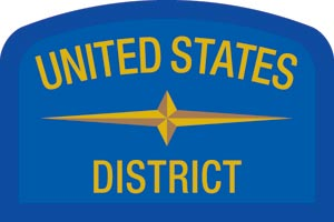 United States Geographic Patch