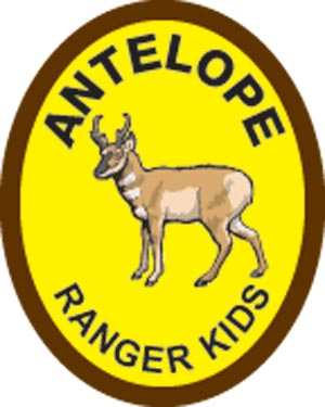 Antelope Award Patch