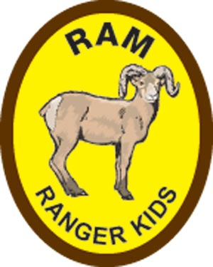 Ram Award Patch