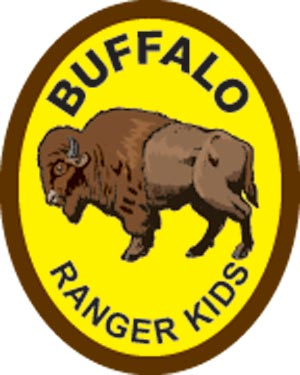 Buffalo Award Patch