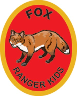 Fox Award Patch