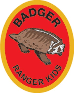 Badger Award Patch