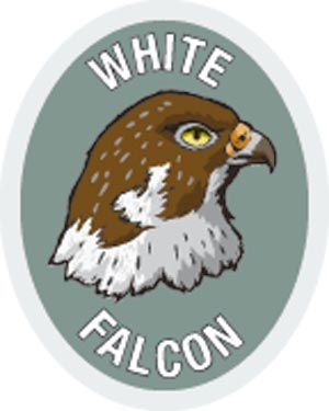 Discovery Rangers Advancement Patch - White Falcon
