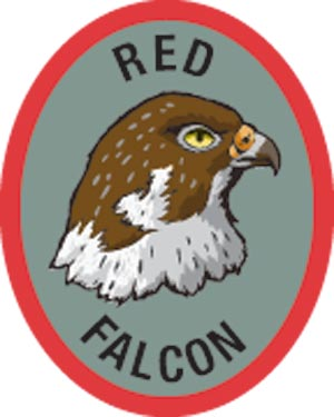 Discovery Rangers Advancement Patch - Red Falcon