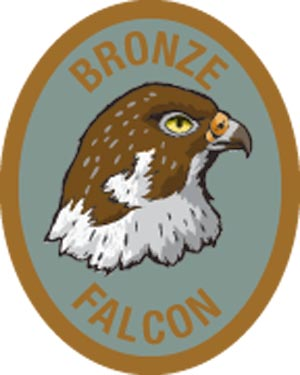 Discovery Rangers Advancement Patch - Bronze Falcon