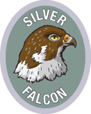Discovery Rangers Advancement Patch - Silver Falcon