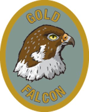 Discovery Rangers Trail Patch - Gold Falcon