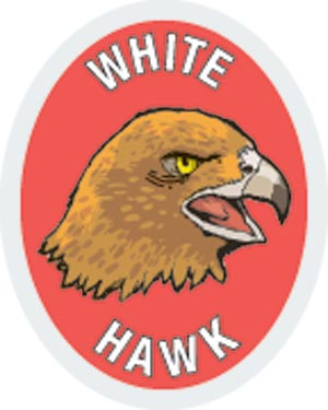 Discovery Rangers Advancement Patch - White Hawk