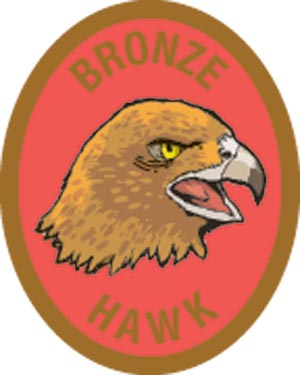 Discovery Rangers Advancement Patch - Bronze Hawk