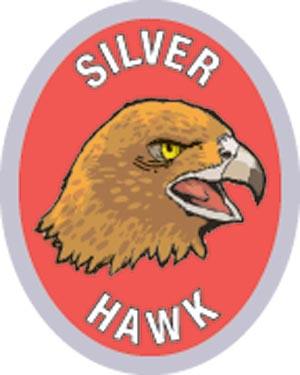 Discovery Rangers Advancement Patch - Silver Hawk