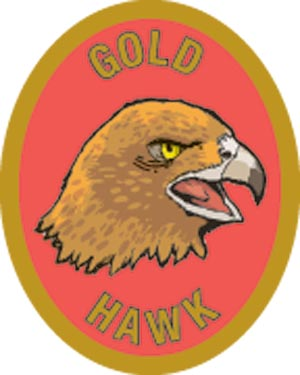 Discovery Rangers Trail Patch - Gold Hawk