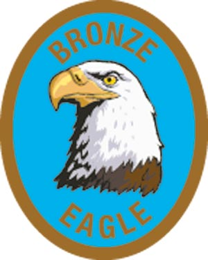 Discovery Rangers Advancement Patch - Bronze Eagle