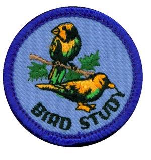Bird Study Merit