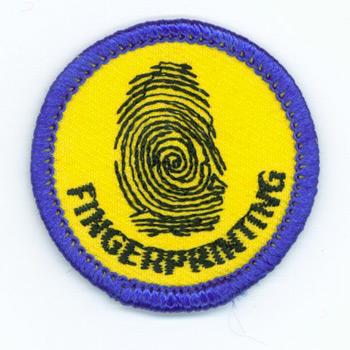 Fingerprinting Merit (Blue)