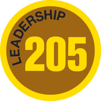 Leadership 205 Merit Patch (Gold)