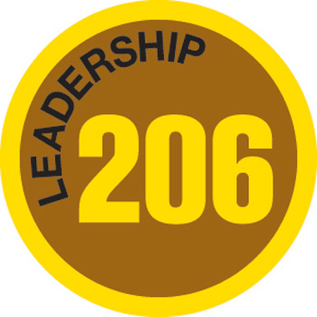 Leadership 206 Merit Patch (Gold)