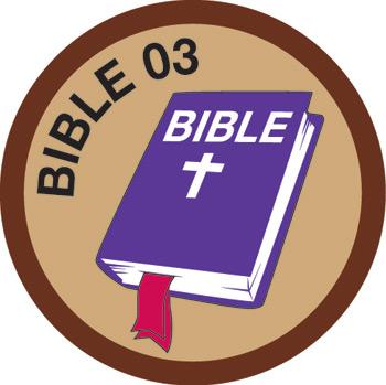Bible Merit #3 (Brown)