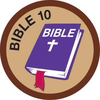 Bible Merit #10 (Brown)