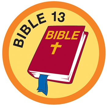 Bible Merit #13 (Orange)