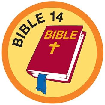 Bible Merit #14 (Orange)