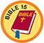 Bible Merit #15 (Orange)