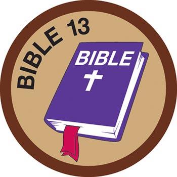 Bible Merit #13 (Brown)